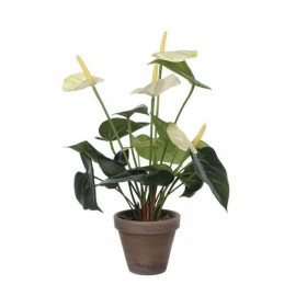 Plante artificielle Anthurium - Hotelpros